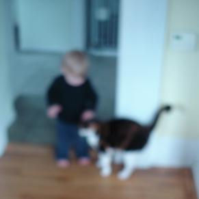 and-kitty.jpg