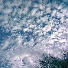 sky1.jpeg