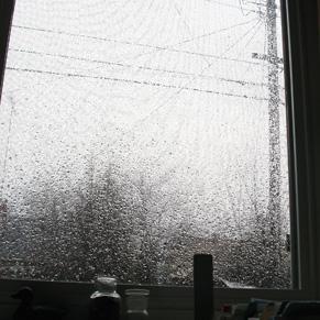 more-rain.jpg