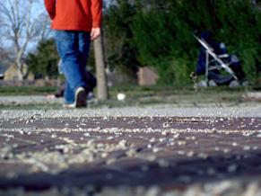 fridays-walk.jpg